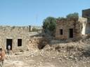 "(<a class=""download"" href=""https://www.mamluk.uni-bonn.de/islamic-archaeology/Gallery/malka-and-hibras-2003/khalifa_50s.JPG/at_download/image"">Download</a>)"