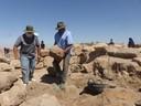 "(<a class=""download"" href=""https://www.mamluk.uni-bonn.de/islamic-archaeology/Gallery/tall-hisban-excavation-2018/warren-schultz-moving-rock.jpg/at_download/image"">Download</a>)"